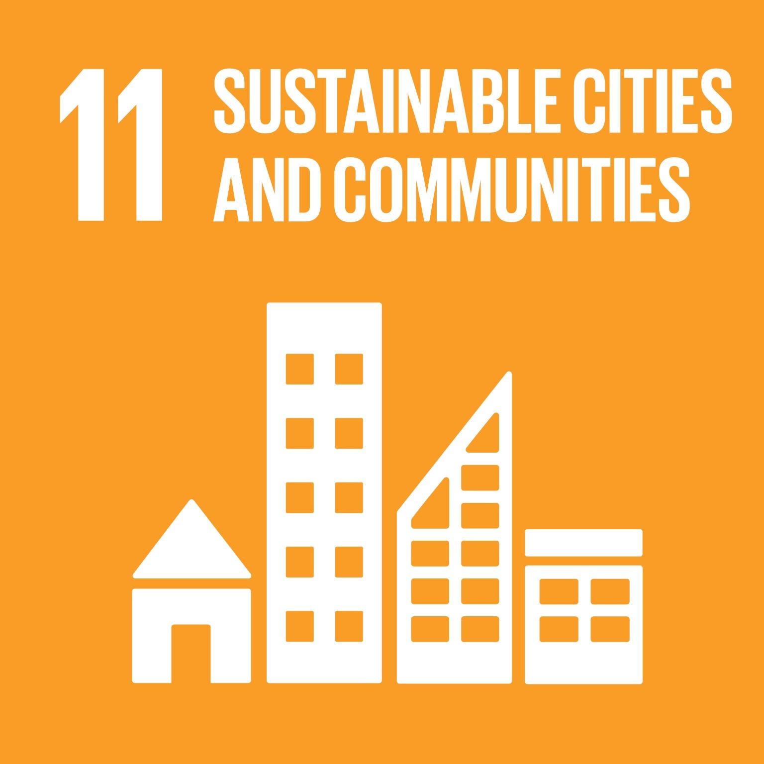 SDG #11
